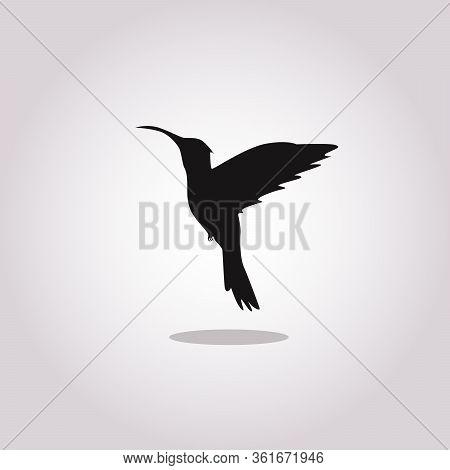 Colibri Vector Icon On White Background. Flat Vector Colibri Icon Symbol Sign From Modern Animals Co