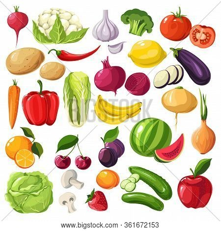 Fruits And Vegetables, Organic Ingredients, Useful Meal Vector
