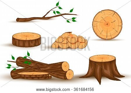 Cartoon Timber. Wood Log And Trunk, Stump And Plank. Wooden Firewood Logs. Hardwoods Construction Ma