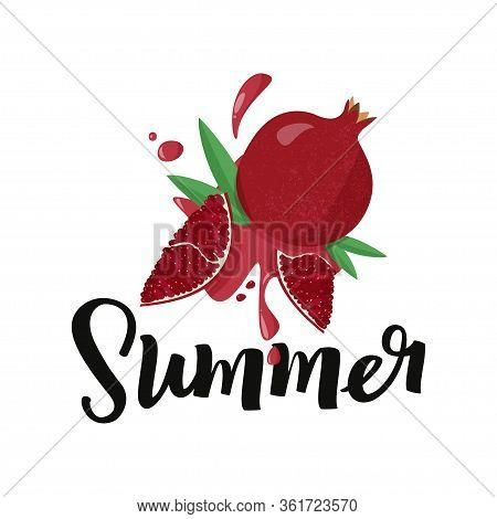 Hand Drawn Pomegranate On White Background With Handwritten Word Summer. Vector Illustration Of Frui