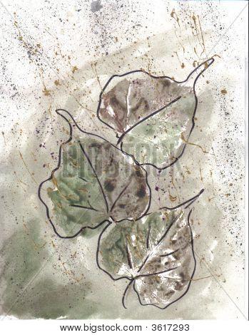Art Three Grape Leaves On Green Grundge