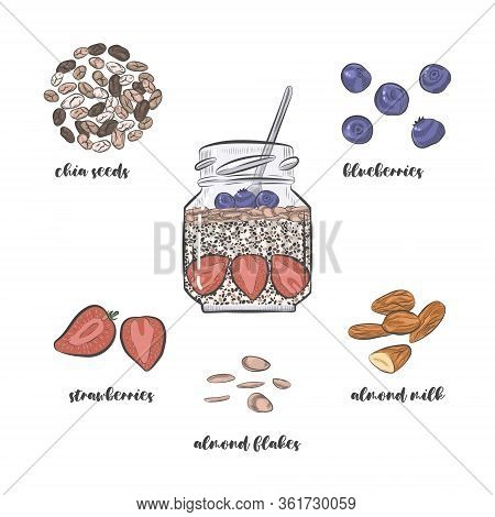 Chia Pudding Recipe Vector Sketch. Chia Dessert In Jar And Pudding Ingredients Isolated On White Bac