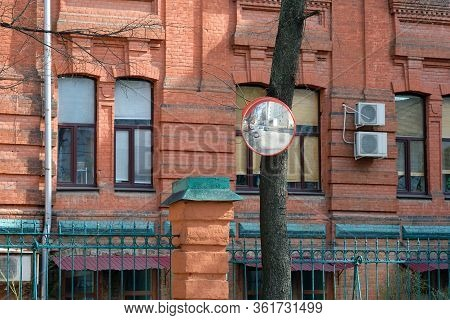 Security Panoramic Mirror Mounted On A Tree Trunk In The City. Spherical Safety Mirrors For Monitori