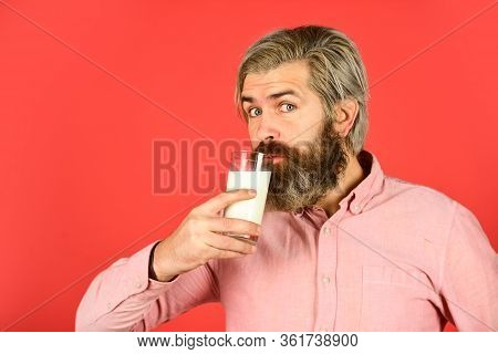 Drink Protein Cocktail. Healthy Habits. Lactose Free. Bearded Man Hold Glass Of Milk. Pasteurized Mi