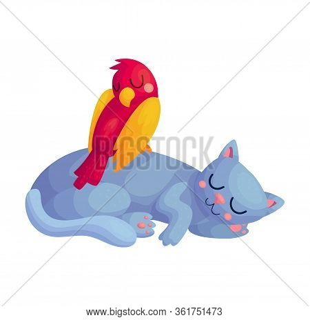 Cute Cartoon Sleeping Pet Characters. Red Parrot Sitting On Grey Cat. Domestic Animals Asleep. Nurse