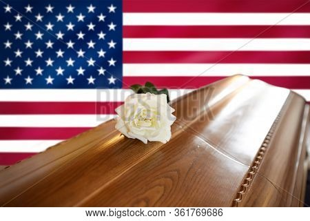 funeral and mourning concept - white rose flower on wooden coffin over flag of america on background