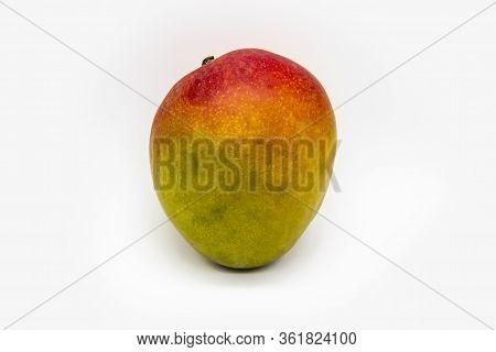 Mango Fruit Isolated On White Background. One Ripe Mango Fruit Isolated. Healthy One Whole Fresh Big