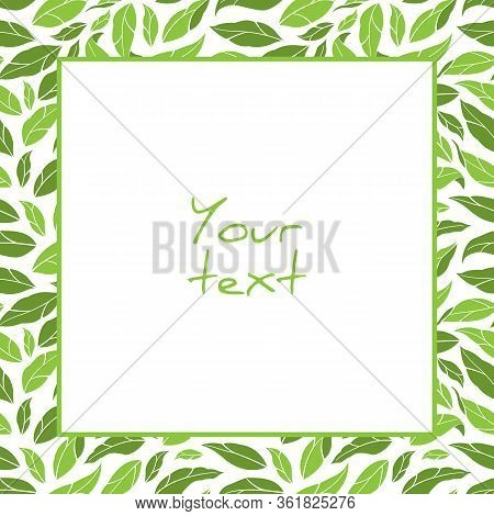 Vector Foliate Frame; Square Frame With Green Leaves For Greeting Cards, Invitations, Wedding Cards,