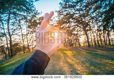 Catching The Sun In The Forrest. Mans Hand Reachingd Towards The Sun.
