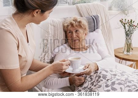 Beautiful Young Nurse Serves Tea To An Elderly Lady In A Private Nursing Home