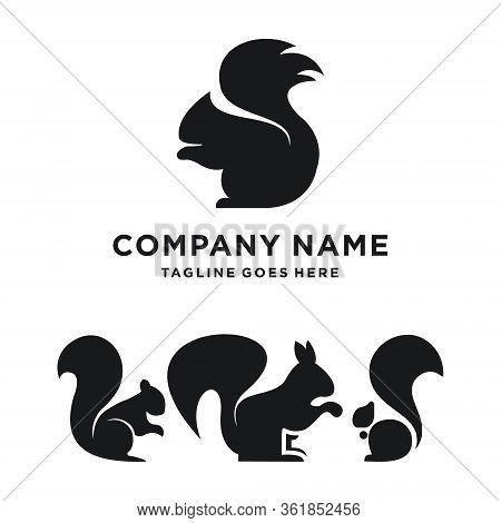 Squirrel Logo Design. Squirrel Set Logo Template. Modern Design. Flat Logo. Vector Illustration