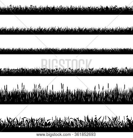 Grass Border Silhouettes. Black Grass Silhouettes, Natural Environment Herb Borders, Grass Panorama.