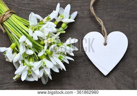 Wite Snowdrop Spring Flowers And Decorative Heart For Text On Old Wooden Table.springtime Holidays B