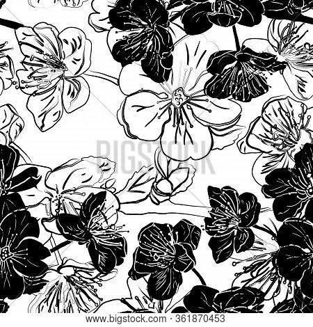 Seamless Pattern With Apple Or Cherry Flowers. Black Vector Illustration Isolated On White Backgroun