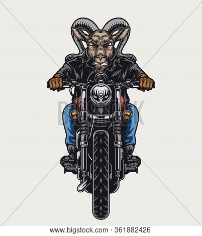 Ferocious Goat Head Biker Colorful Concept With Cruel Animal Riding Motorcycle In Vintage Style Isol