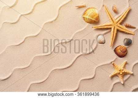 Summer Beach Background With Shell, Sea Star, Vacation And Travel Concept, Flat Lay Top View Copy Sp