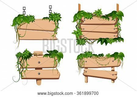 Tropical Twining Liana Vines Leaves Twist Around 4 Classical Cartoon Wooden Sign Boards Set Isolated