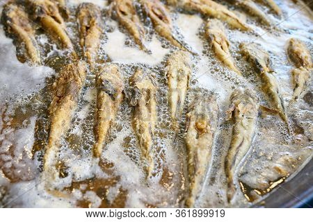 Fried Fish Capelin On Black Frying Pan. Fried Capelin, Sprats. Little Several Fish Are Fried In Boil
