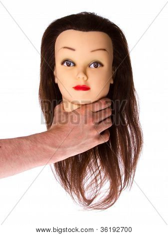 Hand Holding A Puppet (hair Styling)