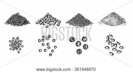 Piles Of . Black Pepper Peas, Sesame Seeds, Poppy Seeds, Caraway Seeds. Set. Natural Seasoning And C