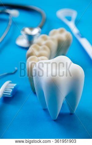 Dental Model And Dental Equipment On Blue Background, Concept Image Of Dental Background. Dental Hyg