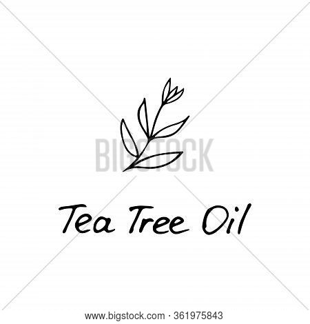 Tea Tree Plant. Cosmetic Ingredient Tea Tree Oil. Hand Drawn Icon For Print And Web. Vector Graphic