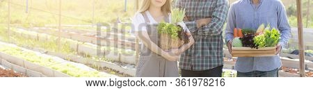 Beautiful Portrait Young Asian Woman And Man Harvest And Picking Up Fresh Organic Vegetable Garden I