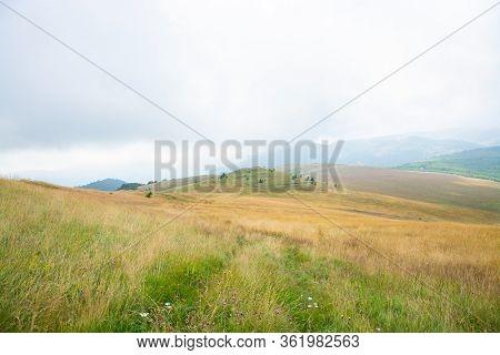 Green Hill Top Landscape