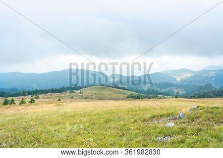 Green Meadow Hill