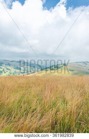 Lush Mountain Hills
