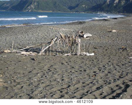 Driftwood Beach Sculpture