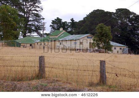 Australian Shearing Shed