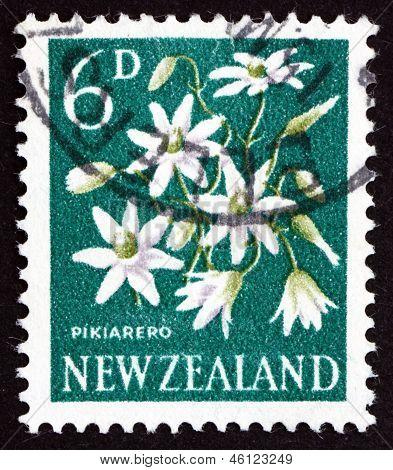Postage Stamp New Zealand 1960 Pikiarero, Clematis Forsteri, Flowering Plant