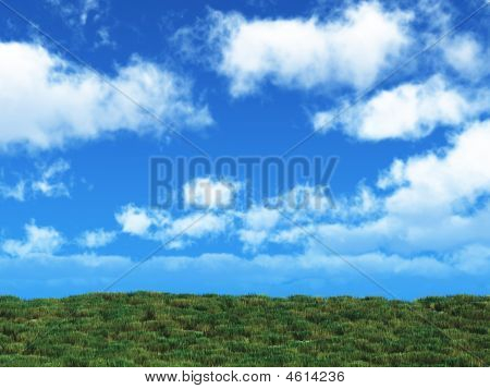 Blue Sky And Grass