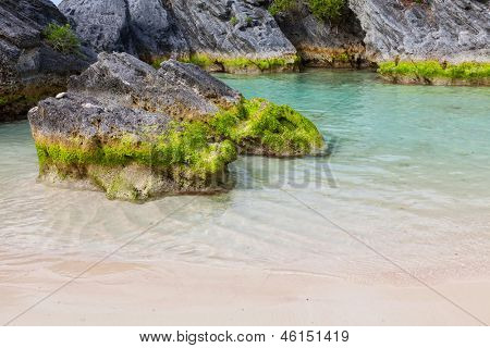 Moss covered rocks in a sandy tidal pool on the south shore of Bermuda