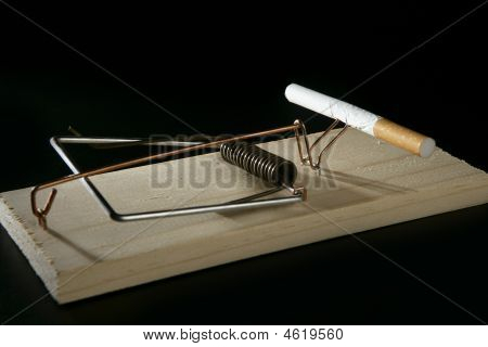 Cigarette Adicction As A  Mouse Trap
