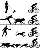 Four editable vector silhouettes of dogs reacting to a passing cyclist with all elements as separate objects poster