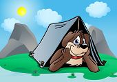 illustration of a Brown Puppy Dog camping outdoor in nature background poster