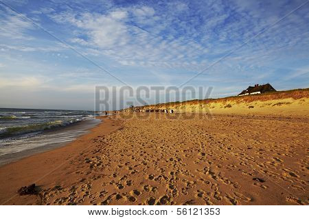The Rantum beach at the time of the sunset. The sand is lighted from the deep standing sun in a golden - yellow - red color. poster