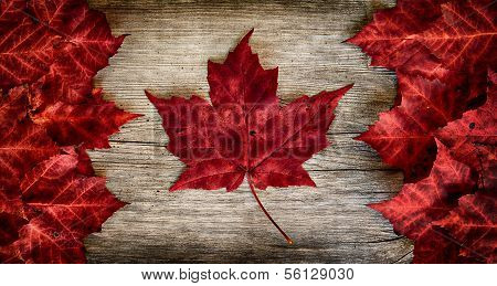 Flag of Canada constructed entirely out of genuine maple leaves.