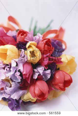Celebrate Flowers