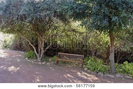 Welcoming Garden Bench