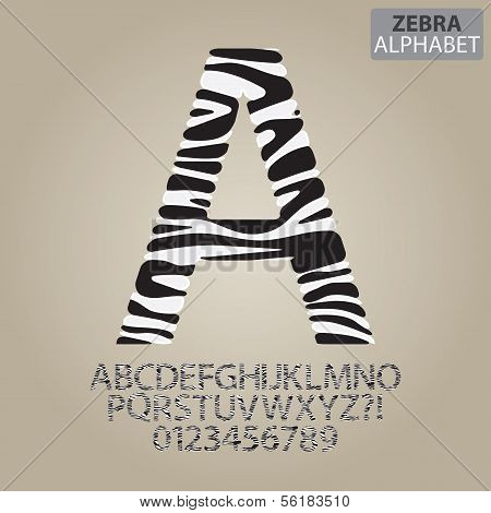Zebra Stripe Alphabet And Numbers Vector
