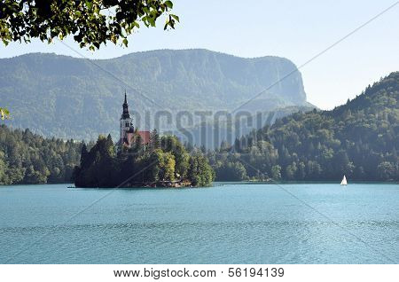 Island And Castle Of Bled In The Early Morning