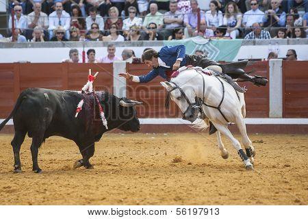 Spanish bullfighter on horseback Pablo Hermoso de Mendoza bullfighting on horseback Bull reaches the