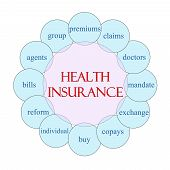 Health Insurance concept circular diagram in pink and blue with great terms such as premium claims mandate and more. poster