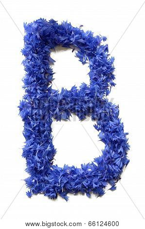 Letter B Made Of Flowers (cornflowers) Isolated On White Background
