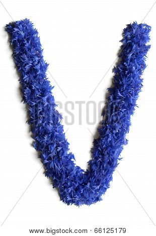Letter V Made Of Flowers (cornflowers) Isolated On White Background