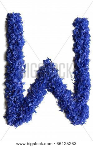 Letter W Made Of Flowers (cornflowers) Isolated On White Background
