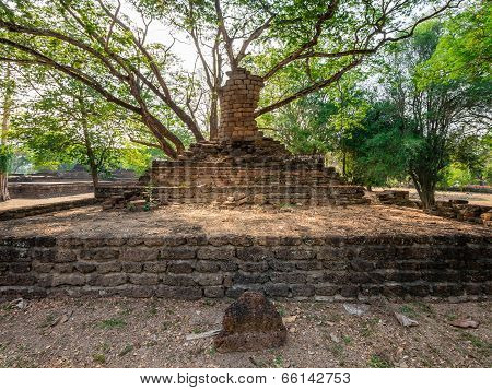 Broken Ancient Buddha Under A Tree At Kamphaengphet Historical Park, Thailand